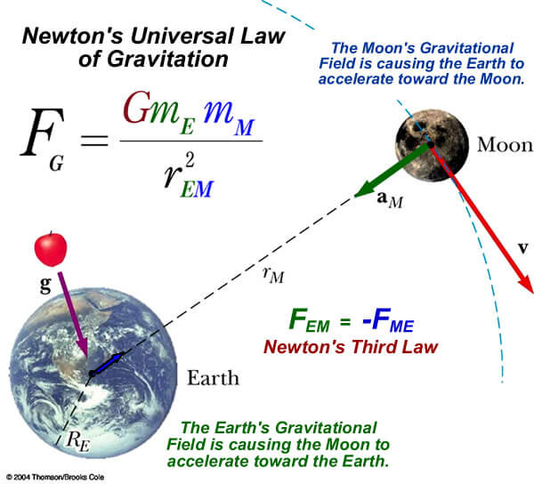 gravitational force forces in nature