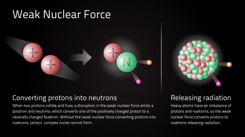 weak nuclear force forces in nature